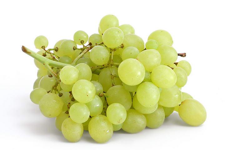 狗狗不能吃葡萄