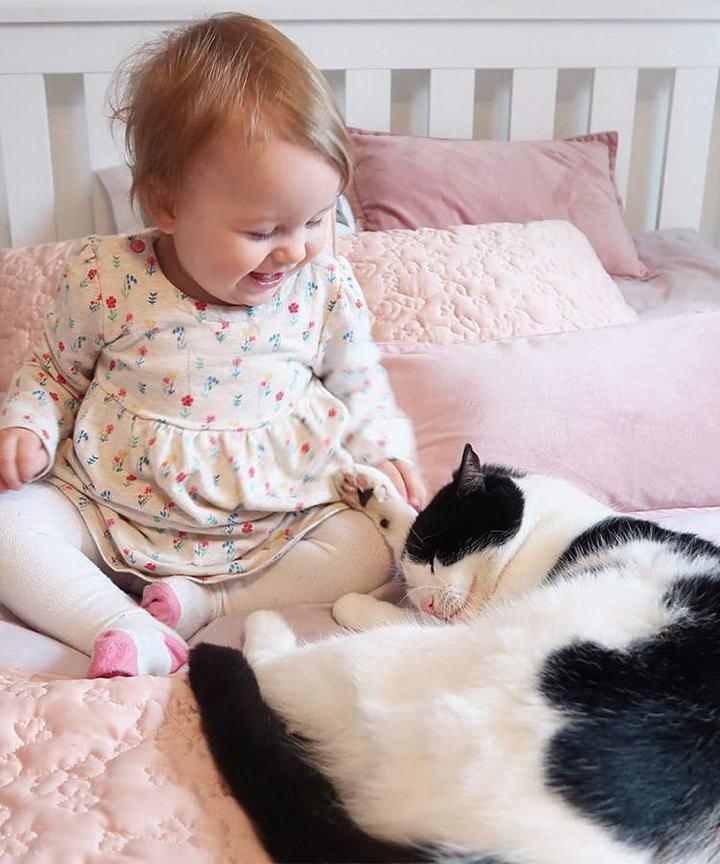 如何阻止猫咪爬到婴儿床上和宝宝一起睡觉