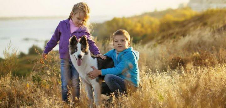 家长们如何让自己孩子和狗狗和平共处?