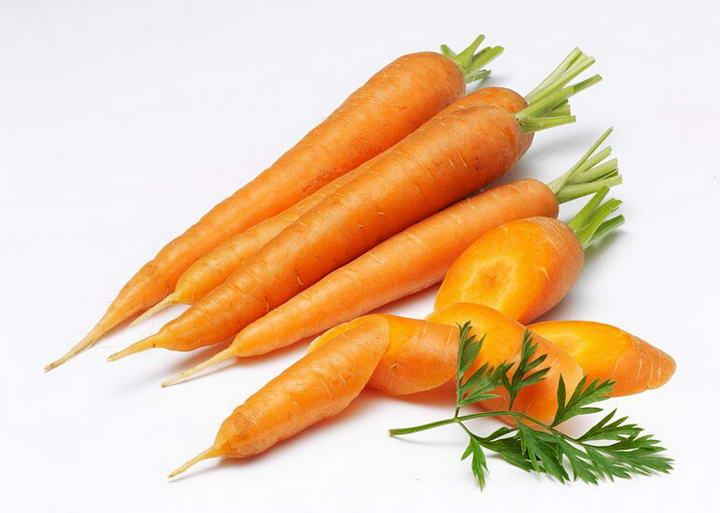 狗狗可以吃的10种人类食物宠物鲜食食材胡萝卜