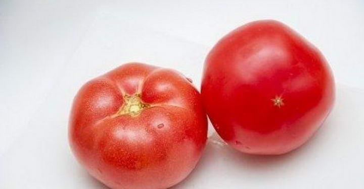 狗狗可以吃的10种人类食物宠物鲜食食材西红柿