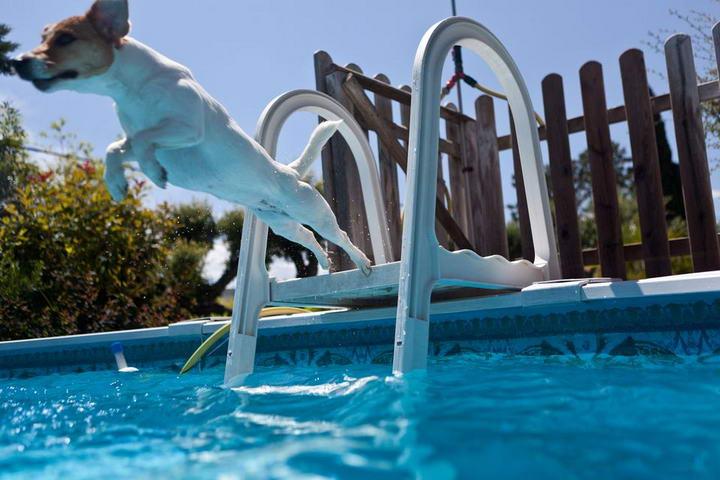 安全的游泳