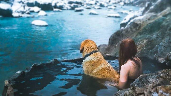 狗狗可以泡温泉么?宠物犬能不能泡温泉?