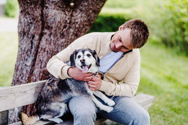 延缓宠物狗狗关节疾病的六大对策