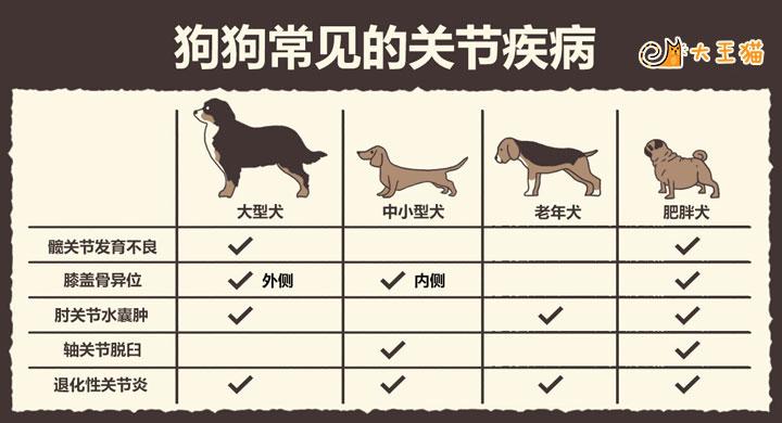 对照表格,看看家里的宠物属于哪一种!