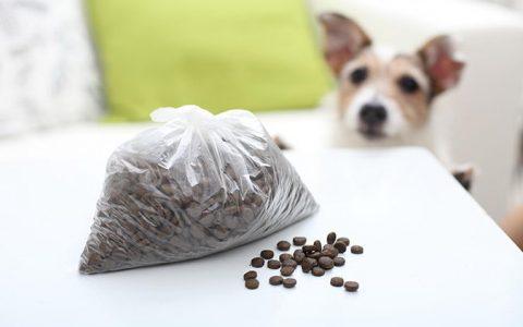 超实用的狗粮和猫粮的保存方法