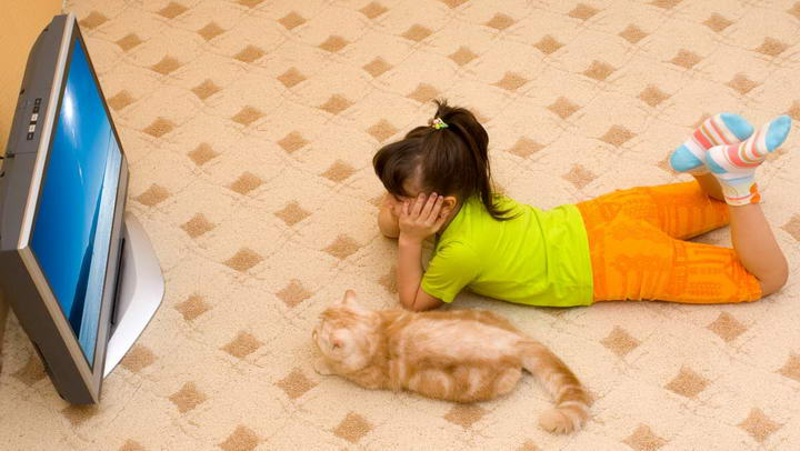 猫咪狗狗也爱看电视?宠物看电视会近视么?