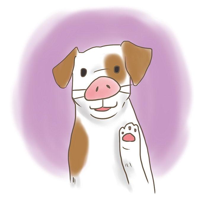为什么狗狗会发出猪叫声?