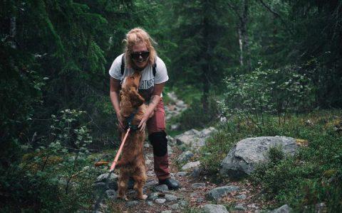 夏天户外遛狗需要小心各种寄生虫