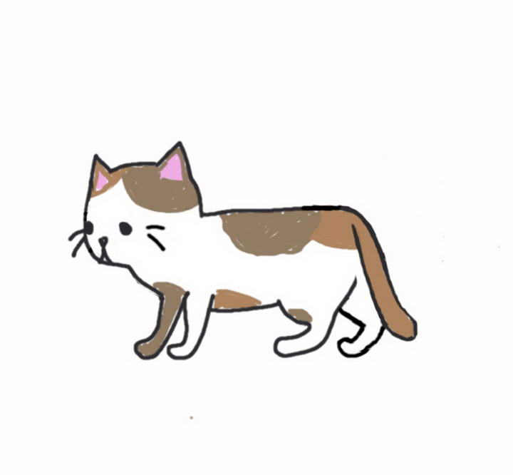 【图解】猫咪的10种尾巴动作解读:读懂喵星人的内心