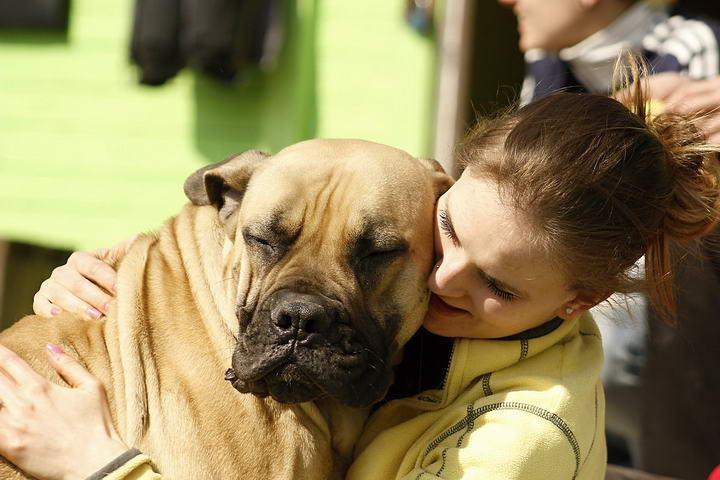 狗狗抑郁症会出现哪些症状?