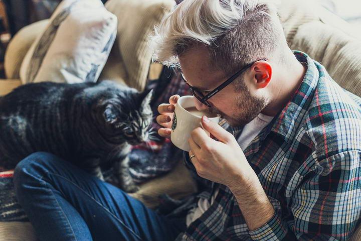 喂猫误区二:只给猫咪喂食干猫粮