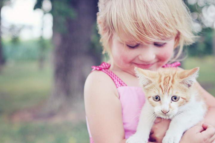 """帮助孩子降低""""猫咪过敏""""症状的10个方法"""