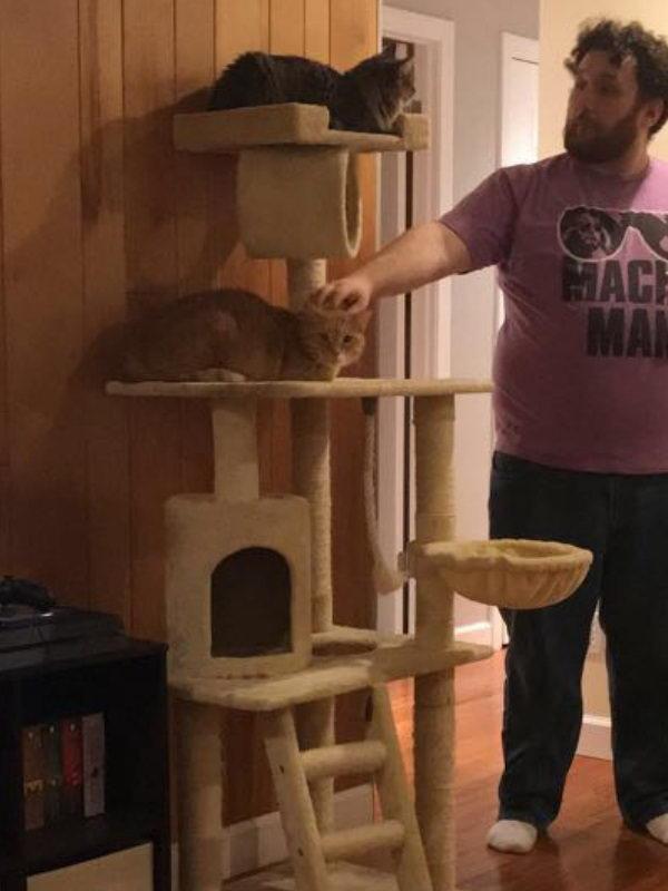 不要抛弃我!橘猫被领养后每分每秒紧盯主人原因惹人疼