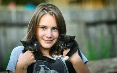 六个让猫咪快速认识和认可你的诀窍