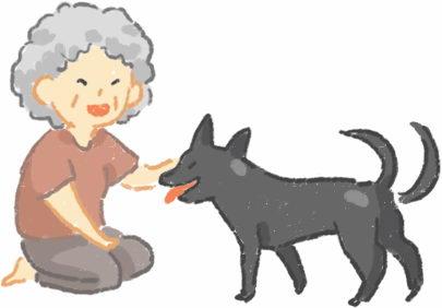 治疗犬是什么?我家狗狗可以成为治疗犬吗?