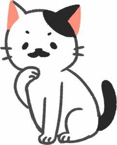 黑白色猫咪有哪些类型?为什么没有上白下黑的猫咪?