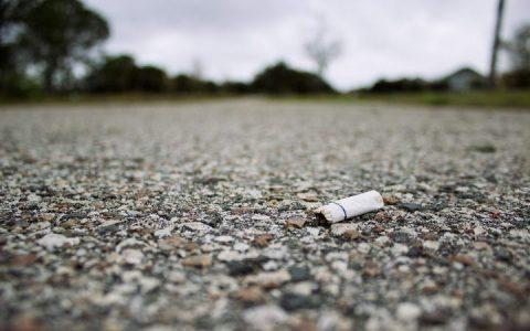 抽烟不仅伤害你!猫咪和狗狗接触二手烟会使得它们患癌的风险增加三倍