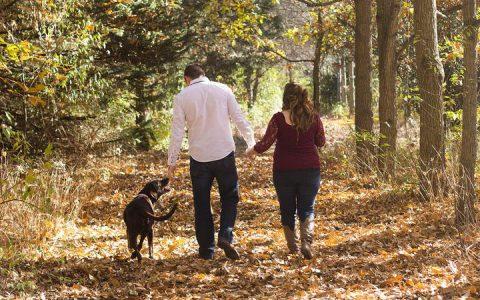 五个秋天狗狗护理容易犯的常见错误