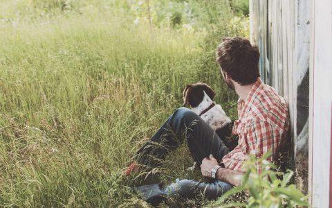 为什么主人喊狗狗的时候它不理睬?狗狗不听话怎么办?