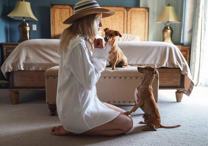 你走到哪跟到哪表明狗狗是爱你的