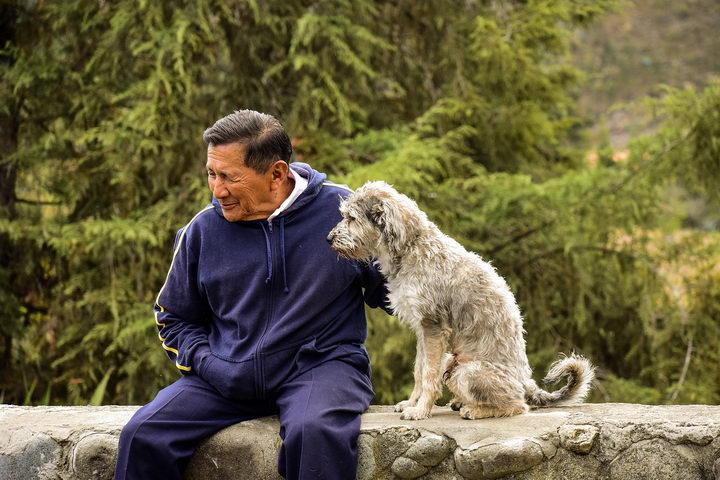 一项新研究发现:养狗的人寿命更长