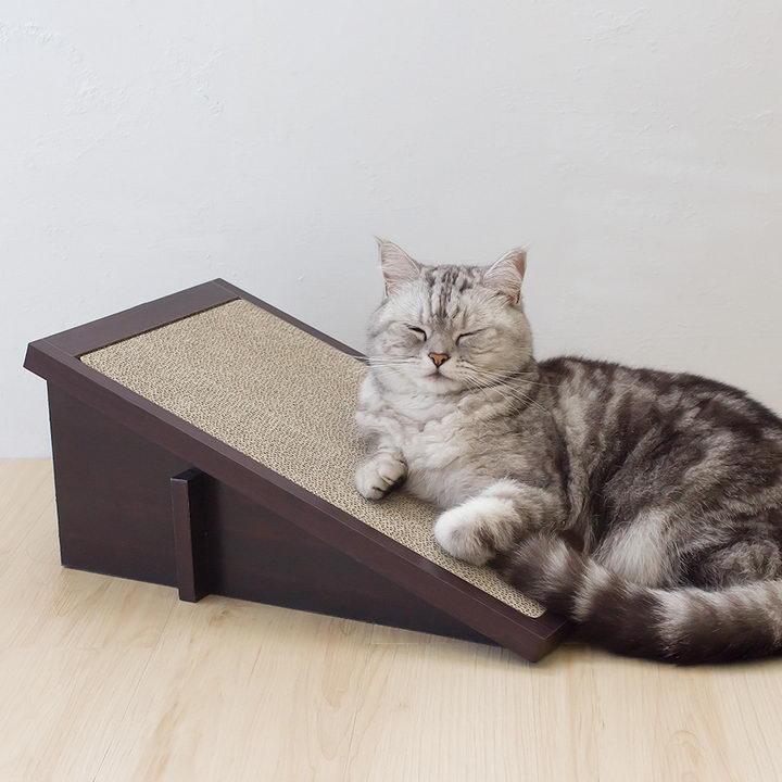 帮助你的小猫咪使用猫抓板