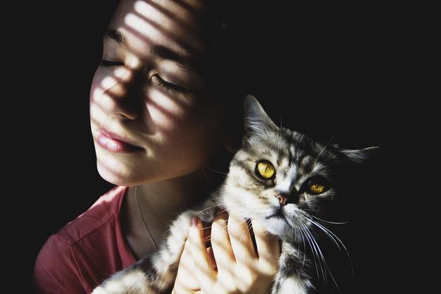 女人母性泛滥,对猫咪管得太多了