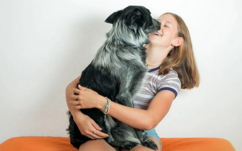 狗狗为什么喜欢舔你?