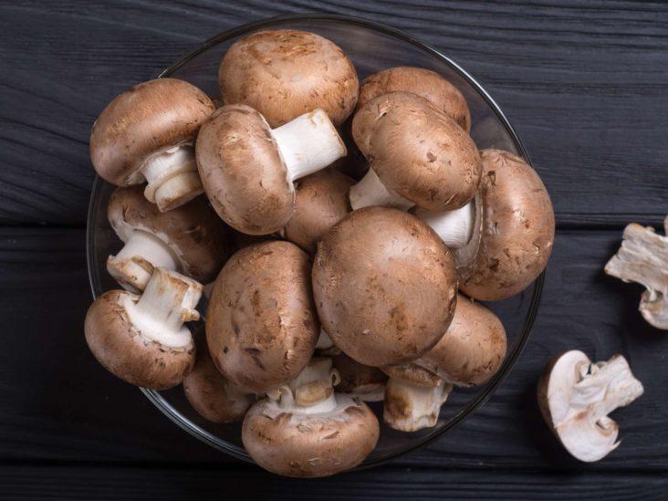 狗狗可以吃蘑菇吗?误食蘑菇会产生哪些症状,该如何处理治疗?